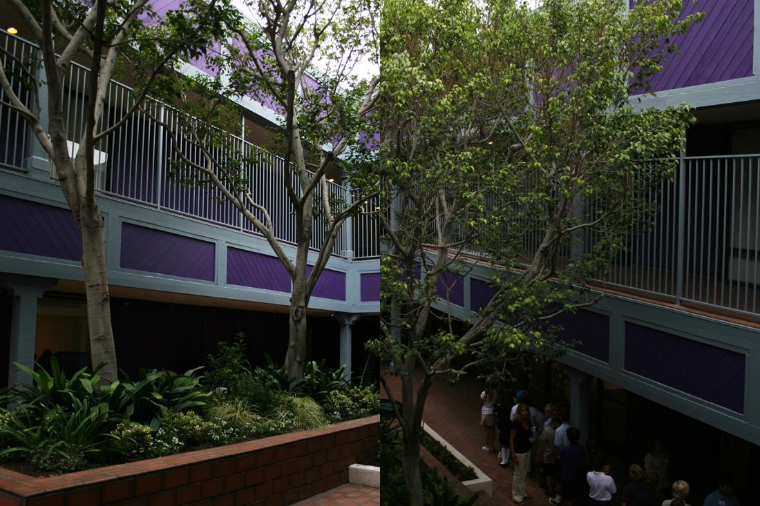 Class spaces open onto a central courtyard.